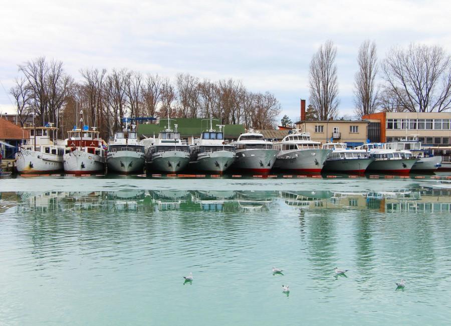 A 175. jubileumi szezonkezdetre megújul a BAHART flottája