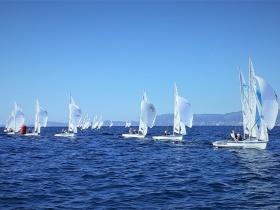 Gyapjasék bronzérmet szereztek Palma de Mallorca - n